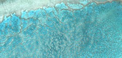 """Australie Corail de Wistari - 23°27'23.99""""S 151°53'22.34""""E à 4 km d'altitude"""