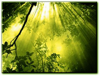 La référence absolue des cycles de la nature, le bien à l'état pur