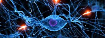 Interconnexions entre la matière et esprit