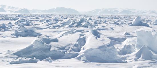 regions polaires