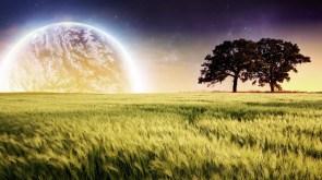 L'arrivée d'un nouveau monde