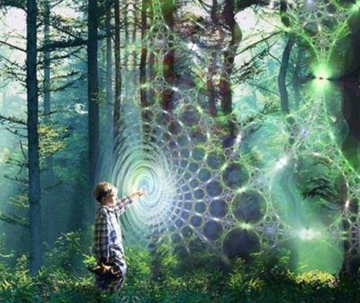 Connexion de l'humain avec la nature